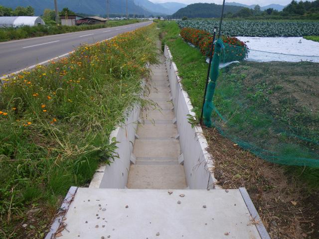 県営農道整備事業川上地区埋原工区排水路測量設計